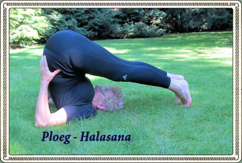 Ploeg - Halasana