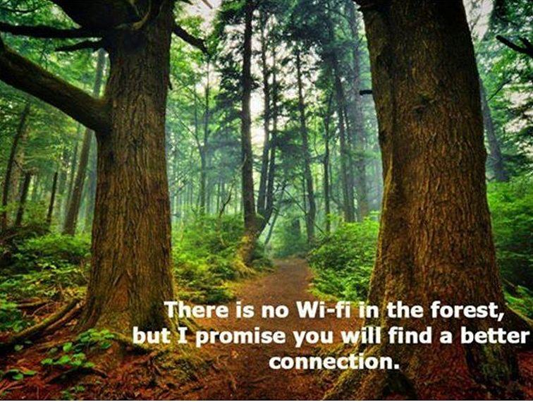 wifi in bos