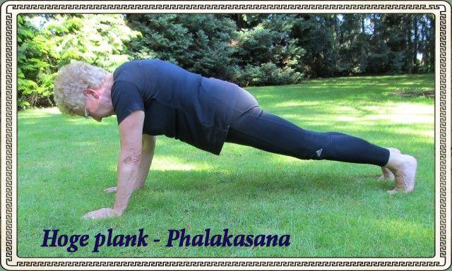 Hoge plank